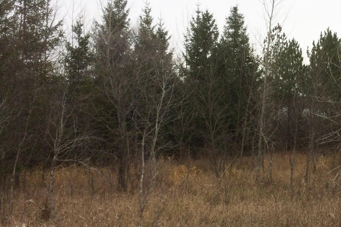 Pebble Lake Estates Lot 7 – SOLD – Charlie Brue Homes